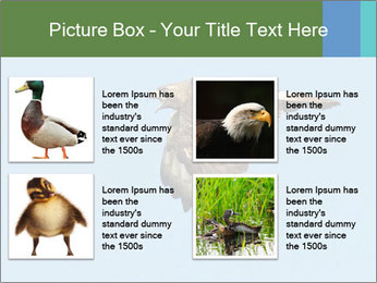 0000081549 PowerPoint Templates - Slide 14