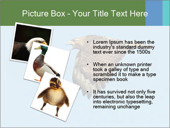 0000081549 PowerPoint Templates - Slide 17