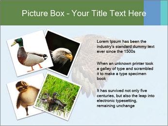 0000081549 PowerPoint Templates - Slide 23