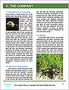 0000081549 Word Template - Page 3