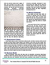 0000081550 Word Template - Page 4