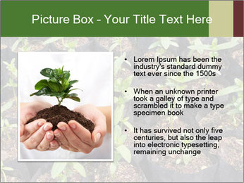 0000081552 PowerPoint Template - Slide 13