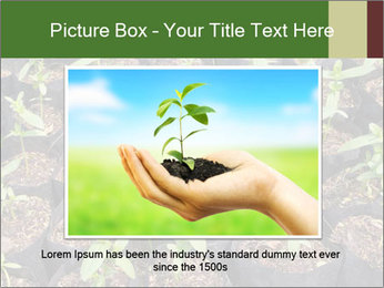 0000081552 PowerPoint Template - Slide 15
