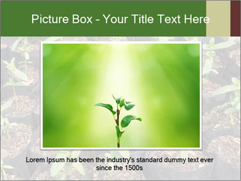 0000081552 PowerPoint Templates - Slide 16