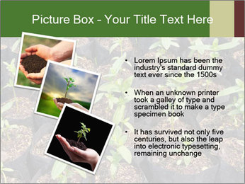 0000081552 PowerPoint Template - Slide 17