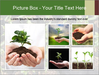 0000081552 PowerPoint Template - Slide 19