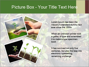 0000081552 PowerPoint Template - Slide 23