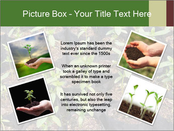 0000081552 PowerPoint Template - Slide 24