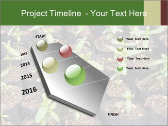 0000081552 PowerPoint Template - Slide 26