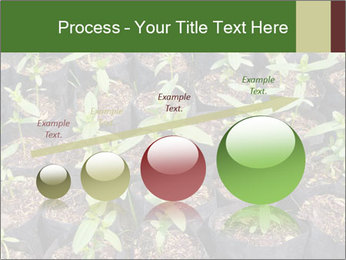 0000081552 PowerPoint Template - Slide 87