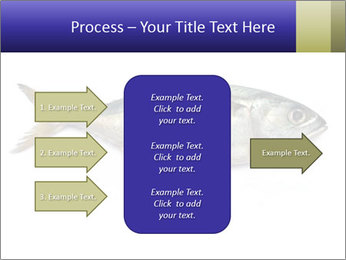 0000081560 PowerPoint Templates - Slide 85