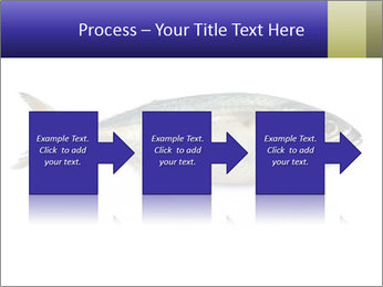 0000081560 PowerPoint Templates - Slide 88