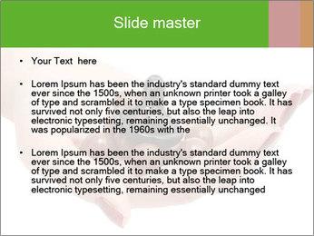 0000081563 PowerPoint Template - Slide 2