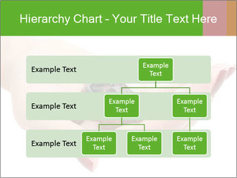 0000081563 PowerPoint Template - Slide 67