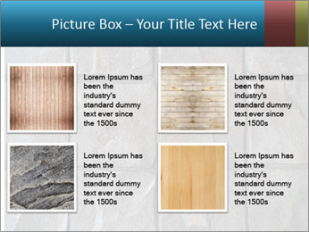 0000081567 PowerPoint Templates - Slide 14