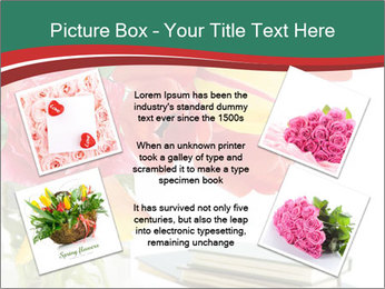 0000081575 PowerPoint Template - Slide 24