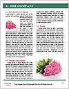 0000081575 Word Templates - Page 3