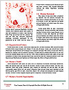 0000081575 Word Templates - Page 4