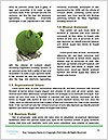 0000081577 Word Templates - Page 4