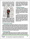 0000081578 Word Templates - Page 4