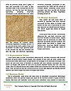 0000081593 Word Templates - Page 4