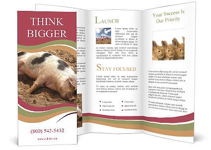 0000081602 Brochure Templates
