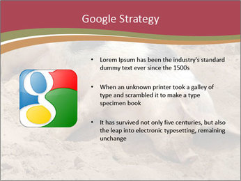 0000081602 PowerPoint Template - Slide 10