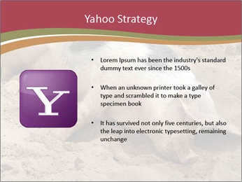 0000081602 PowerPoint Template - Slide 11