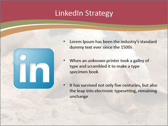 0000081602 PowerPoint Template - Slide 12