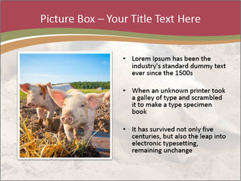 0000081602 PowerPoint Template - Slide 13