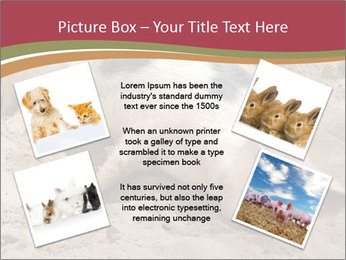 0000081602 PowerPoint Template - Slide 24