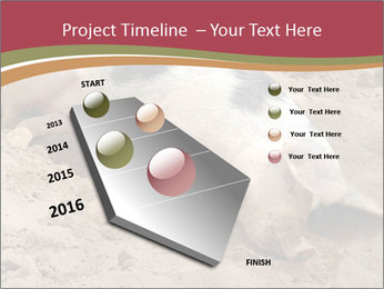 0000081602 PowerPoint Template - Slide 26
