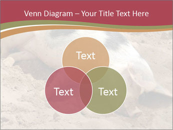 0000081602 PowerPoint Template - Slide 33