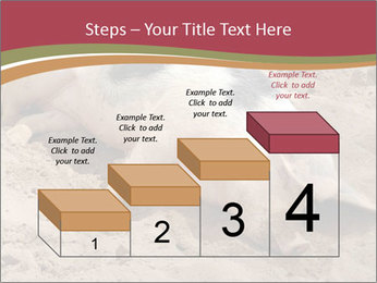 0000081602 PowerPoint Template - Slide 64