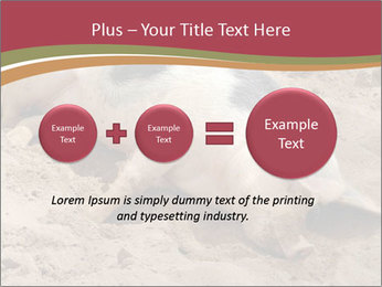 0000081602 PowerPoint Template - Slide 75