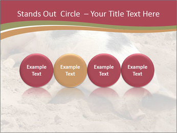 0000081602 PowerPoint Template - Slide 76