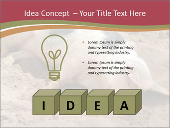 0000081602 PowerPoint Template - Slide 80