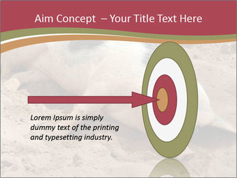 0000081602 PowerPoint Template - Slide 83
