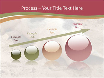 0000081602 PowerPoint Template - Slide 87