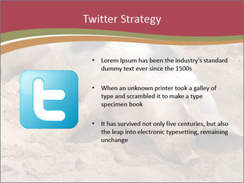 0000081602 PowerPoint Template - Slide 9