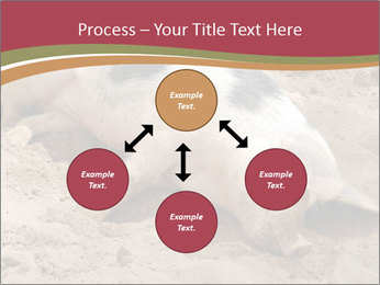 0000081602 PowerPoint Template - Slide 91