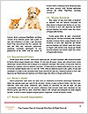 0000081602 Word Template - Page 4