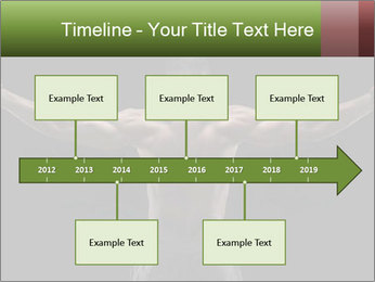 0000081604 PowerPoint Template - Slide 28