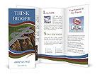 0000081605 Brochure Templates