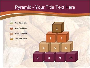 0000081606 PowerPoint Template - Slide 31