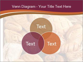 0000081606 PowerPoint Template - Slide 33