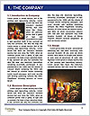 0000081612 Word Template - Page 3
