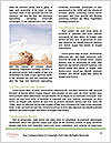 0000081614 Word Templates - Page 4