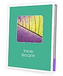 0000081619 Presentation Folder