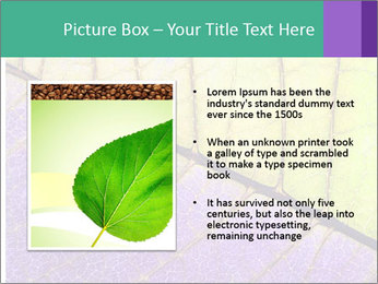 0000081619 PowerPoint Template - Slide 13